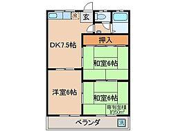 京都府京都市伏見区城通町の賃貸マンションの間取り