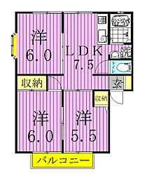 サンライフ蓮見[2階]の間取り