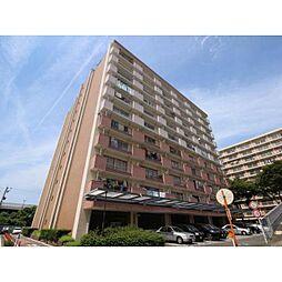 中駒九番団地2号棟[9階]の外観