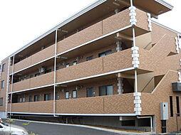 新潟県新潟市江南区諏訪1丁目の賃貸マンションの外観