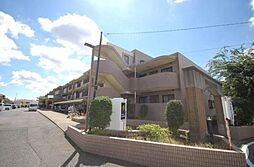 千葉県船橋市上山町1丁目の賃貸マンションの外観