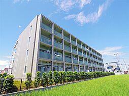 ウィステリア (wisteria)[4階]の外観