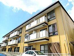 桜丘ローズマンション[3階]の外観