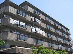 大阪府大阪市住吉区大領5丁目の賃貸マンションの外観