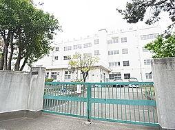 東京都足立区谷中3丁目の賃貸アパートの外観