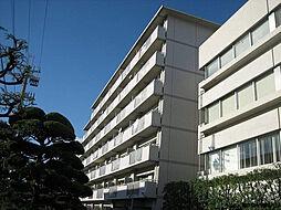 テルツォ南新在家[401号室]の外観