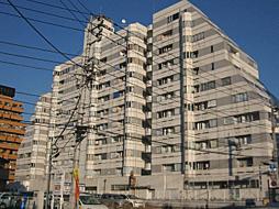 宇都宮ダイカンプラザスポーツメント
