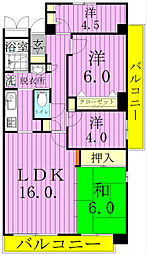 千葉県松戸市大金平1丁目の賃貸マンションの間取り