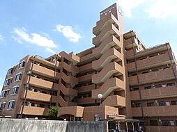 ライオンズマンション高崎[3階]の外観