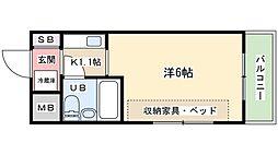MLA香里園1[2階]の間取り