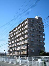 サンセール菊[4階]の外観