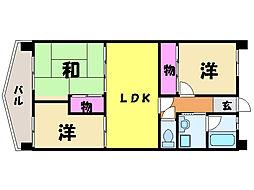 愛媛県松山市山越4丁目の賃貸マンションの間取り
