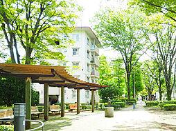 一橋学園駅 6.6万円