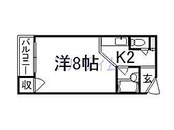 サンウェルス[3階]の間取り