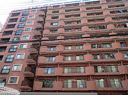 ライオンズマンション中央[7階]の外観
