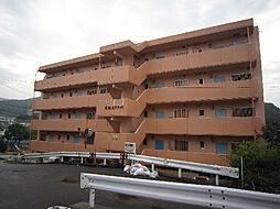 愛媛県松山市畑寺2丁目の賃貸マンションの外観