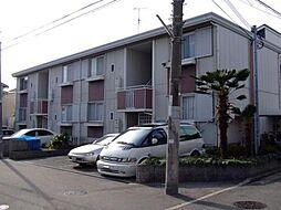 大阪府堺市堺区東上野芝町1丁の賃貸マンションの外観