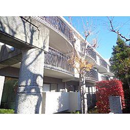 静岡県浜松市中区広沢1丁目の賃貸マンションの外観