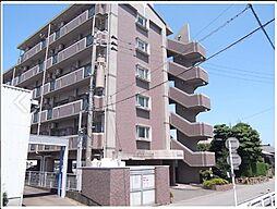 栗木第8ビル[5階]の外観