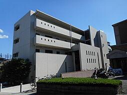 石塚アネックス[1階]の外観