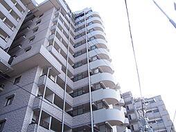 RC・SRC造13階建7階部分。開けた眺望の住まいです。