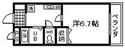 ルーチェ[303号室]の間取り