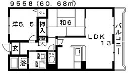 メゾン・ドゥ・ボヌール[307号室号室]の間取り