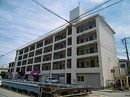 西甲子園ハイツ[3階]の外観