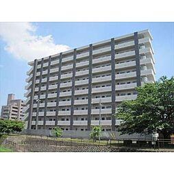 栃木県宇都宮市今泉3丁目の賃貸マンションの外観