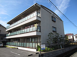パピヨン565[2階]の外観