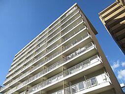 ハイツスリーオーク[10階]の外観