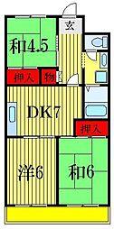 千葉県船橋市本郷町の賃貸マンションの間取り