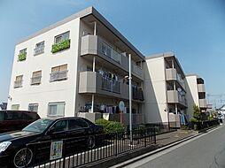 埼玉県富士見市羽沢3丁目の賃貸マンションの外観