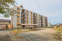 岡山県岡山市東区東平島の賃貸マンションの外観