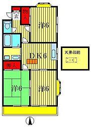 東京都葛飾区柴又3丁目の賃貸アパートの間取り