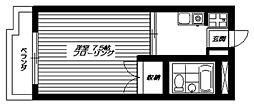 東京都新宿区中井1丁目の賃貸マンションの間取り