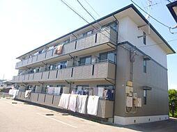 サンシャインハイツ(南江戸)[203 号室号室]の外観