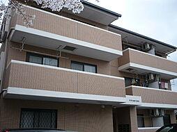 静岡県沼津市千本西町の賃貸マンションの外観