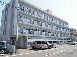 プチメゾン鶴島[102号室]の外観