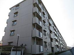 津田沼ハイツC棟[407号室号室]の外観