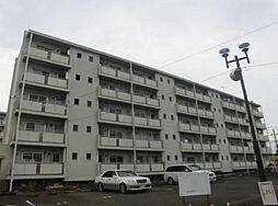 神奈川県横浜市旭区善部町の賃貸マンションの外観