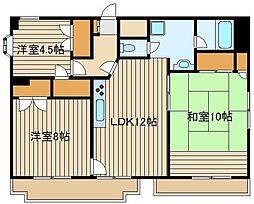 東京都練馬区東大泉4の賃貸マンションの間取り