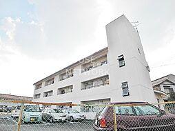 新山荘[305号室号室]の外観