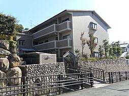 メルベーユ朝日ヶ丘[0202号室]の外観