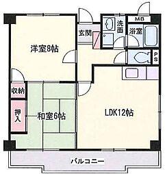 兵庫県姫路市飾磨区下野田3丁目の賃貸マンションの間取り