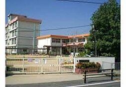 幼稚園大観幼稚園まで786m