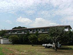 埼玉県川口市大字石神の賃貸マンションの外観