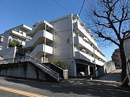 ビューティ武田[303号室]の外観
