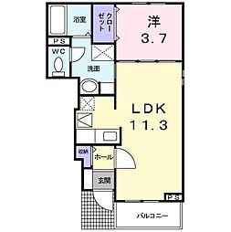 LinoコートII[1階]の間取り