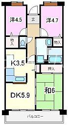 埼玉県新座市新堀3丁目の賃貸マンションの間取り